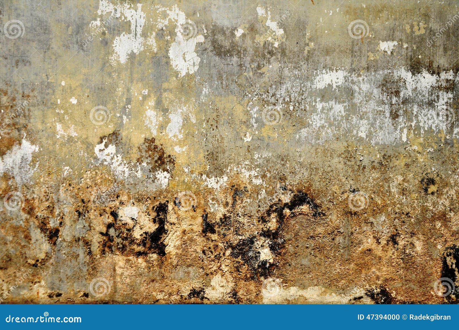 Sumário & fundos velhos do grunge da textura da parede do cimento