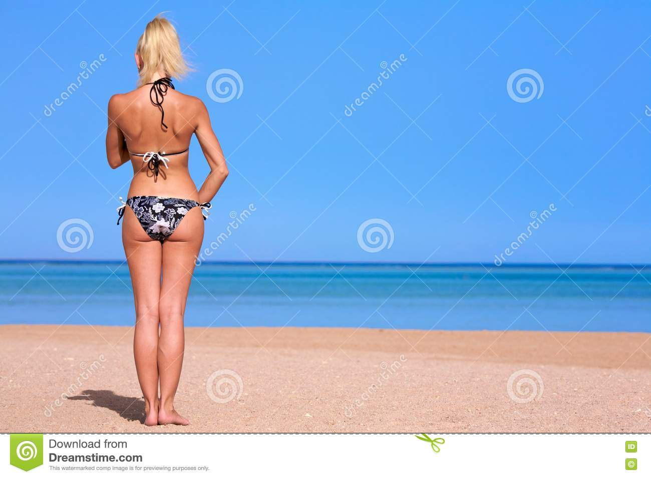 2987cd7ffa0 Free Stock Photography  Summer Back Picture. Image  4992707