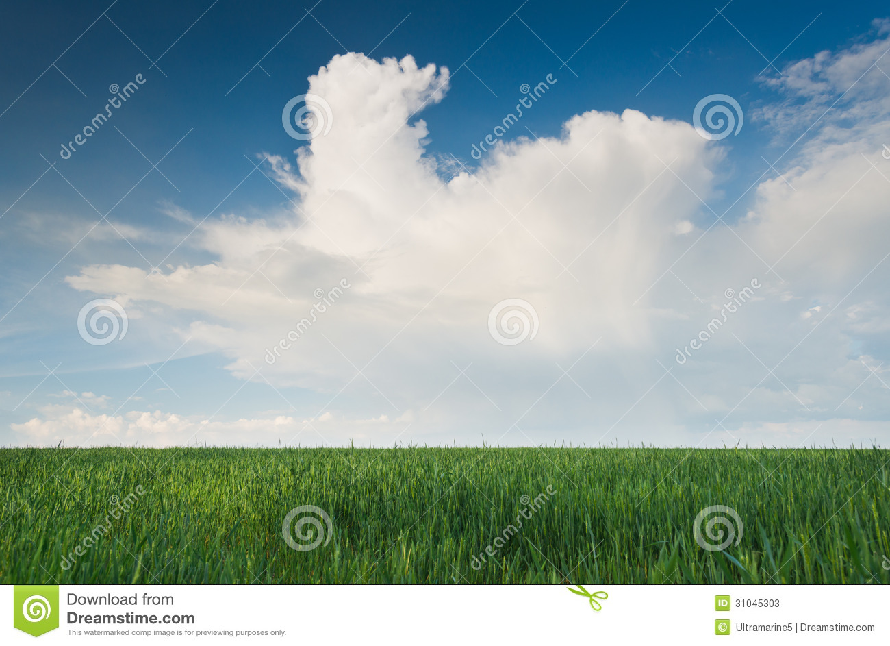 Summer Background Stock Image. Image Of Color, Horizon