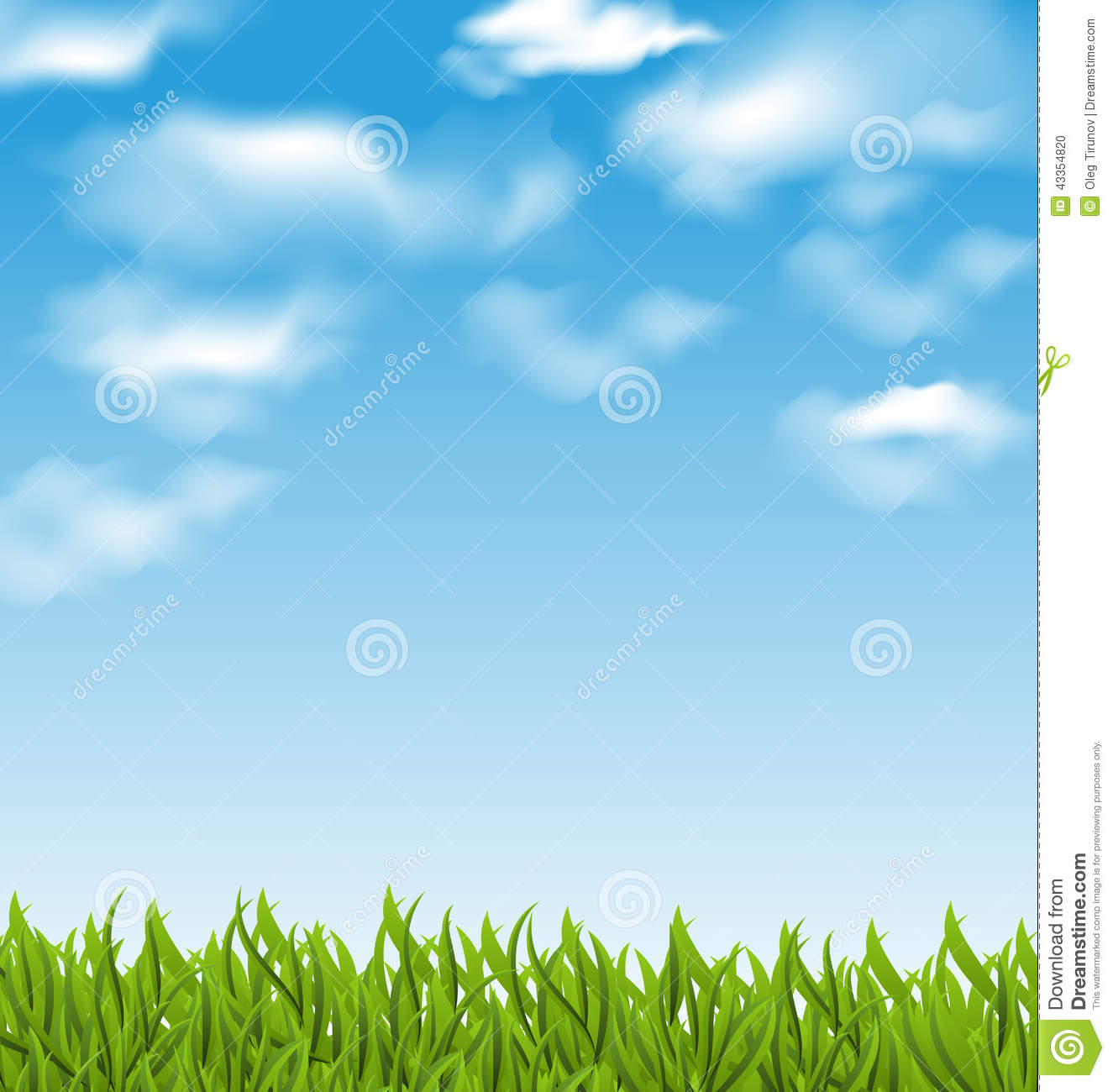 Summer Background With Green Grass And Sky Stock Vector ...