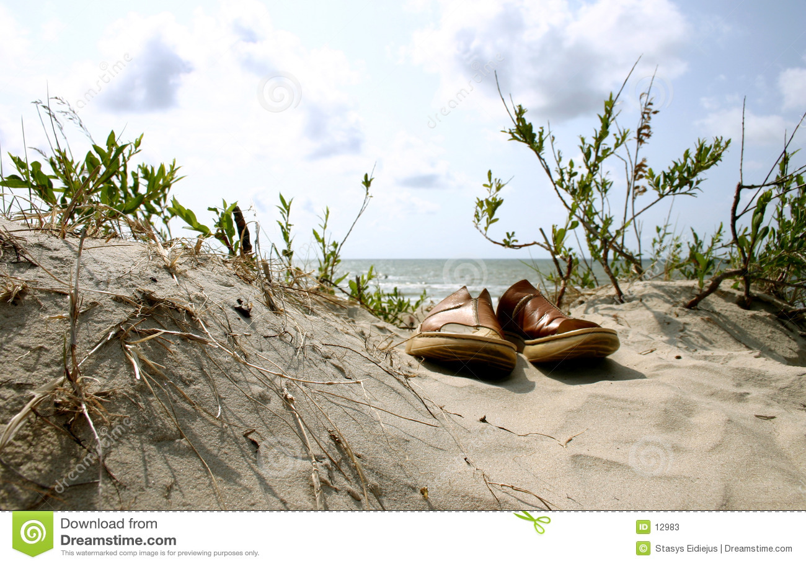 Summer. Beach. Vacation