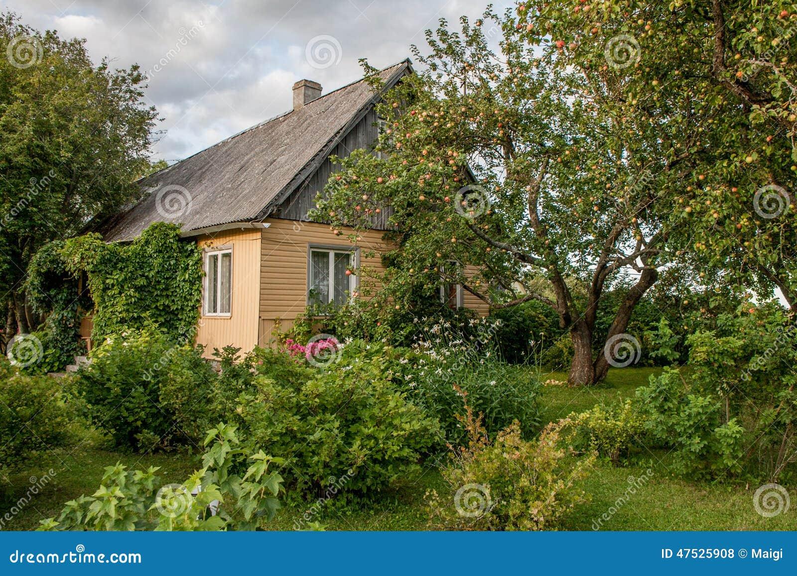 Download Summer Cottage stock photo. Image of vintage, orchard - 47525908