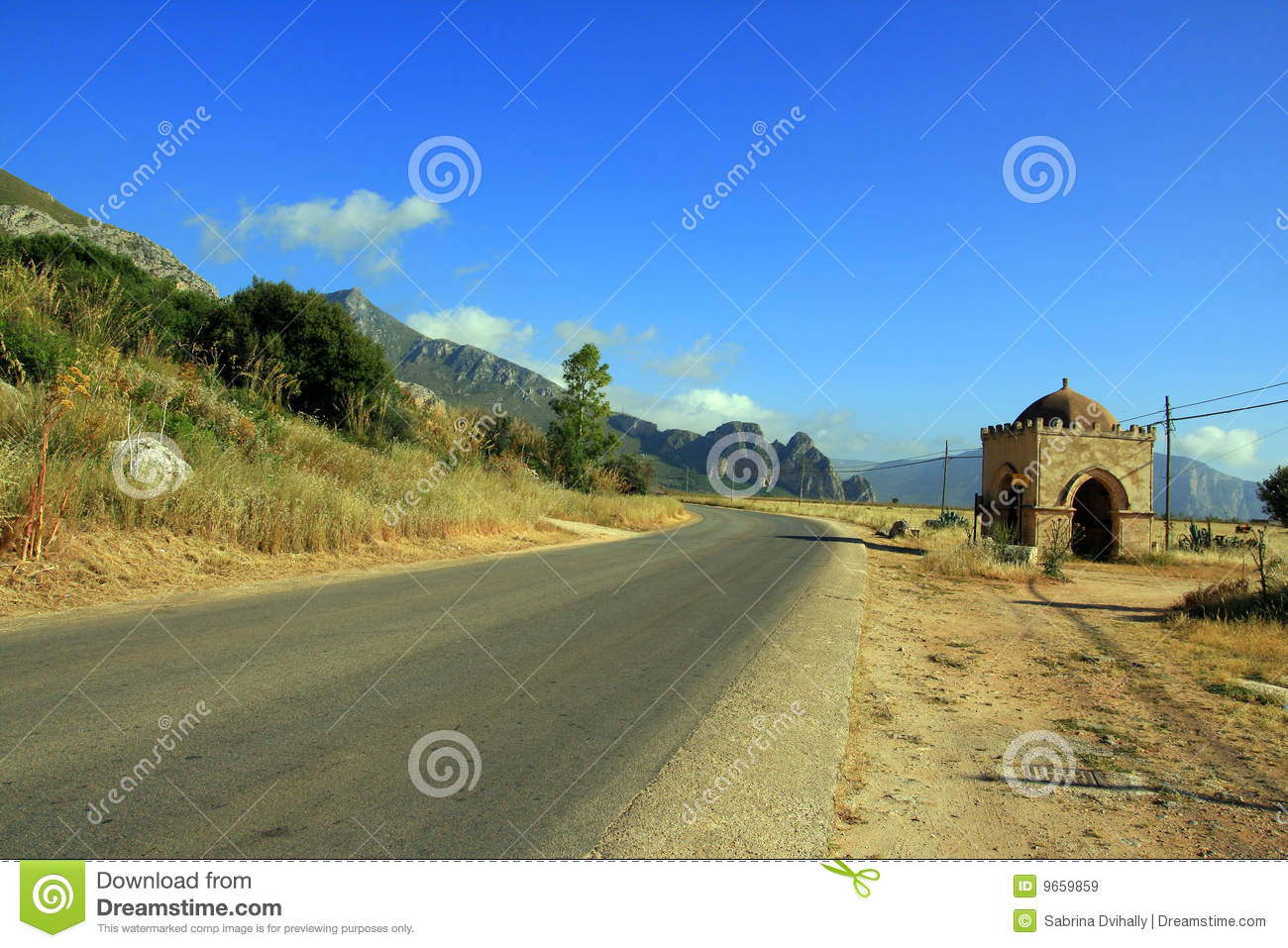Country Road Landscape