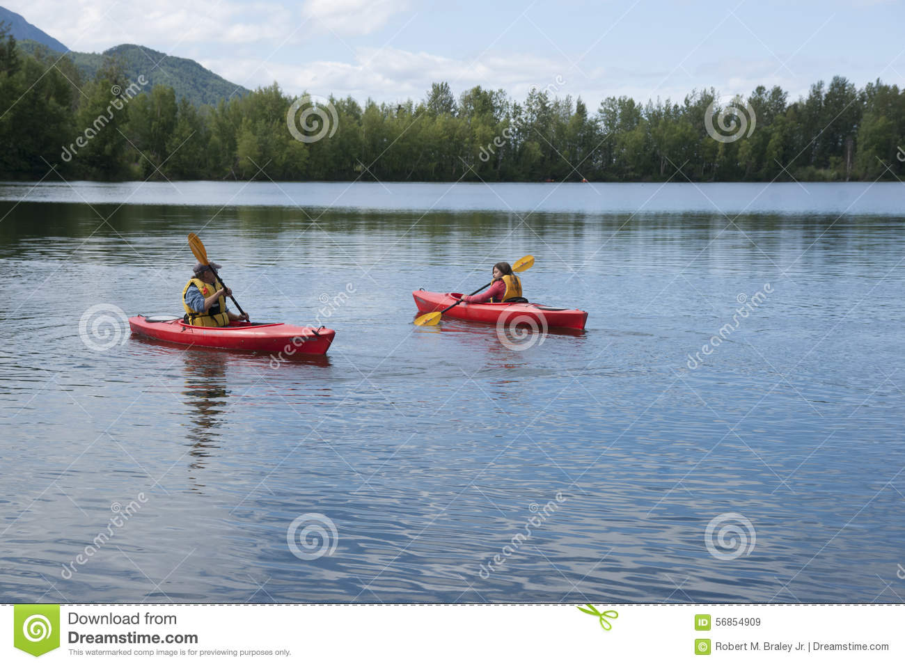 Download Summer Family Fun Day Reflections Lake Alaska Editorial Stock Image - Image of bird, lecture: 56854909