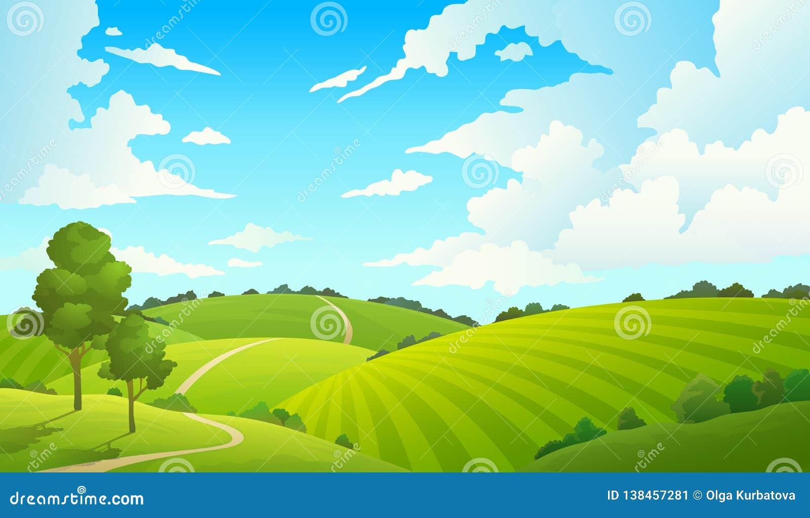 Summer Field Landscape. Nature Hills Fields Blue Sky
