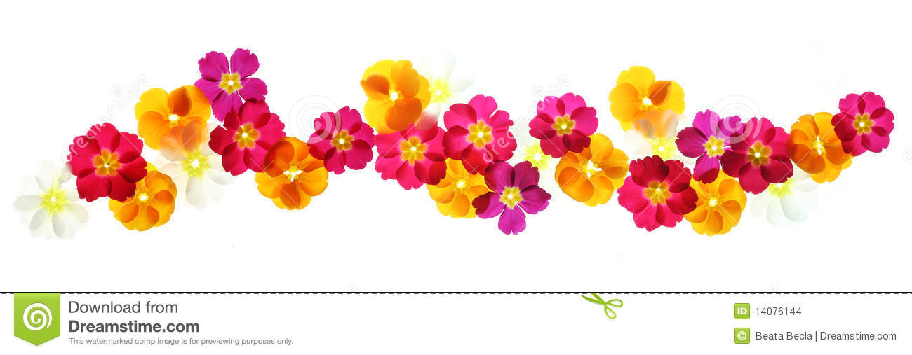Summer Flowers Border Stock Images - Image: 14076144