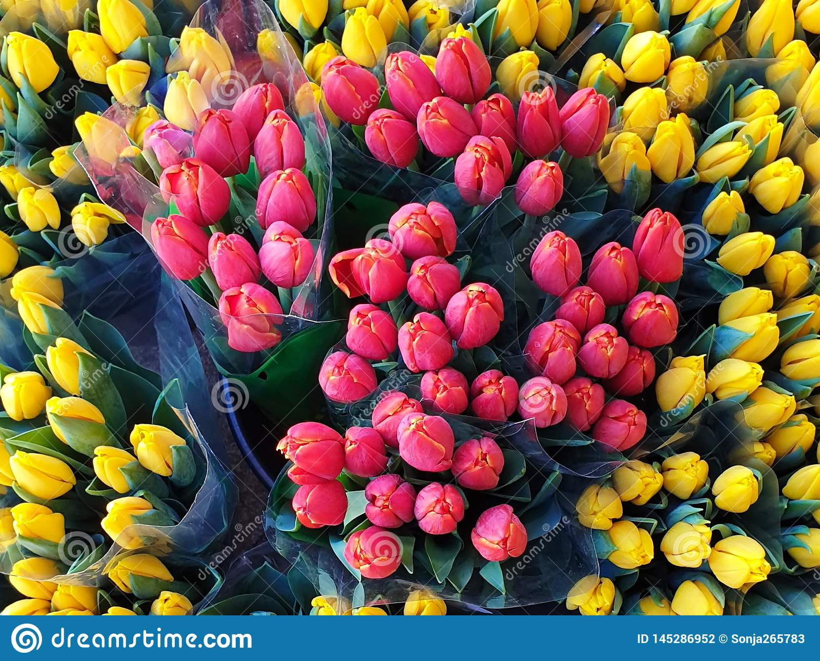 Summer Flowers Market Red Yellow Tulip bouquet background