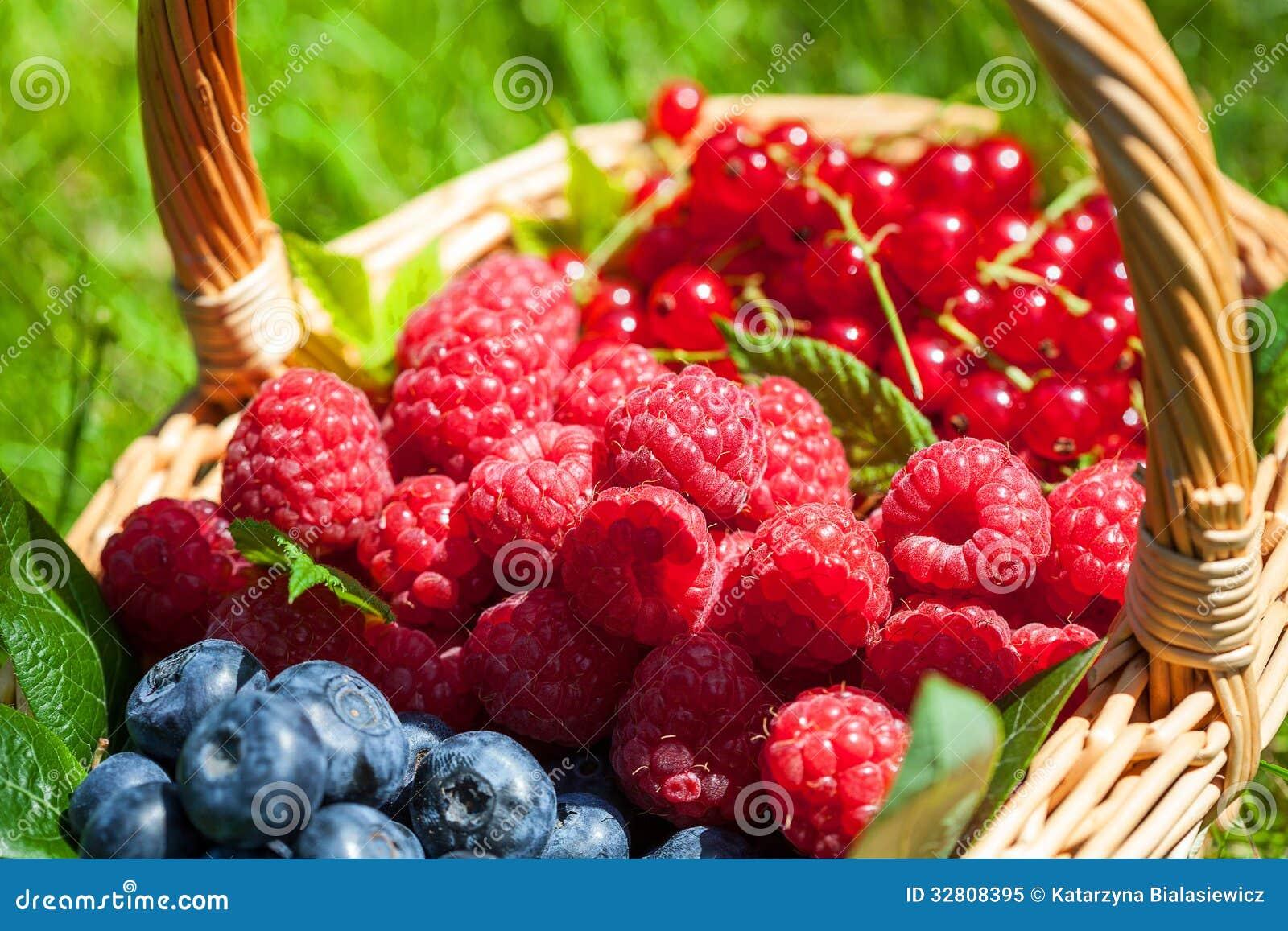Summer Fruit Royalty Free Stock Photo Image 32808395