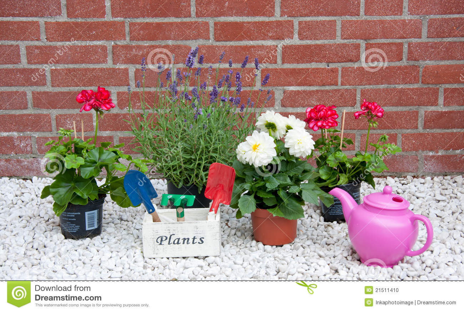 Charming Flowers Garden Stones Summer ...