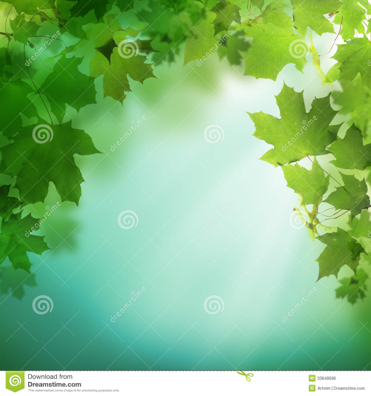 summer green background with greenery foliage stock photo image of