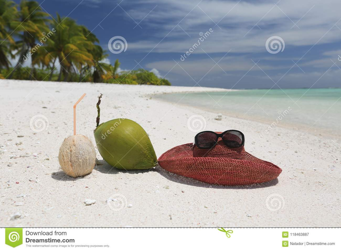 Summer Hat And Coconuts On Tropical Sandy Beach Stock Image - Image ...