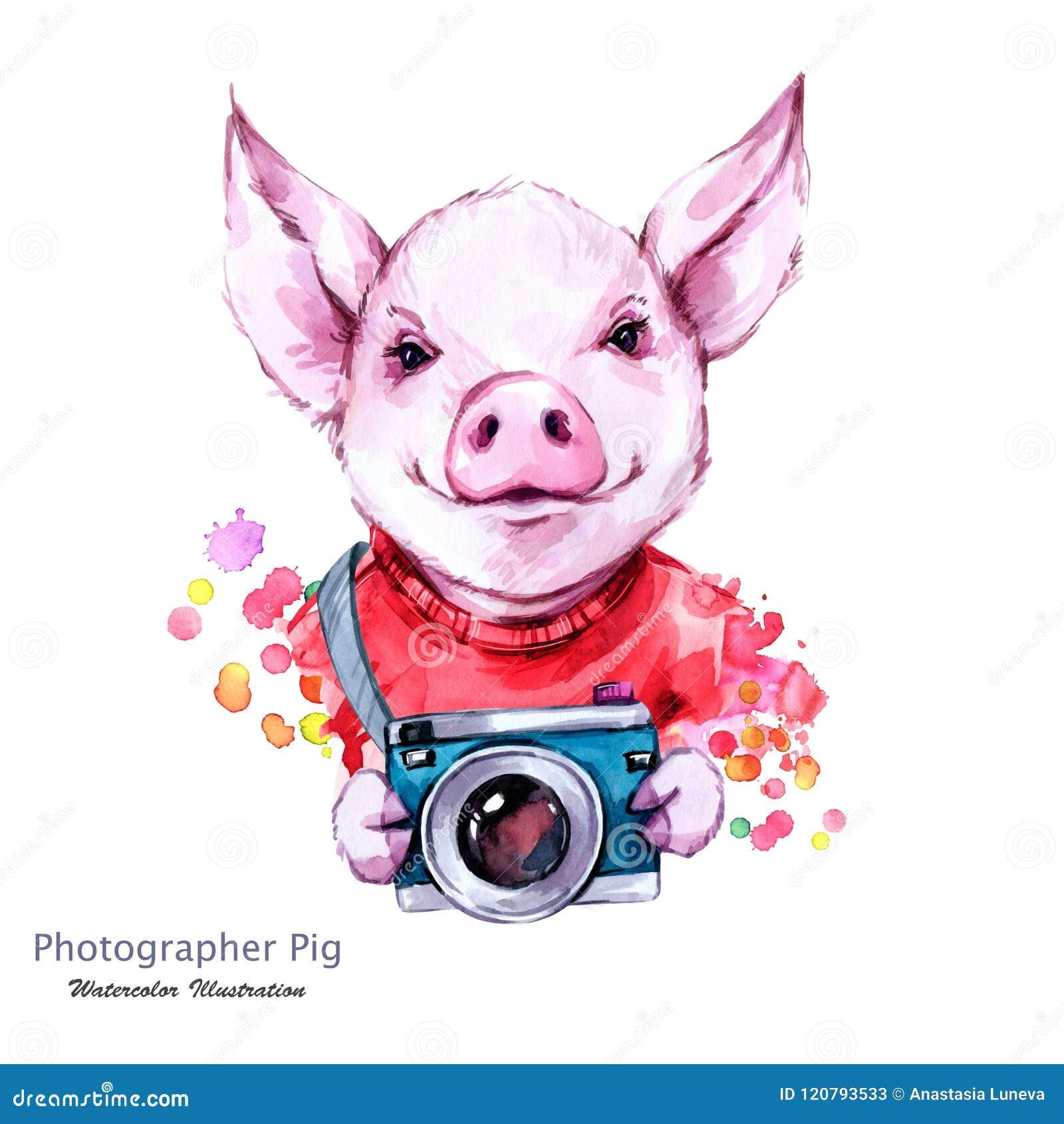 Summer Holidays Illustration  Watercolor Cartoon Pig With