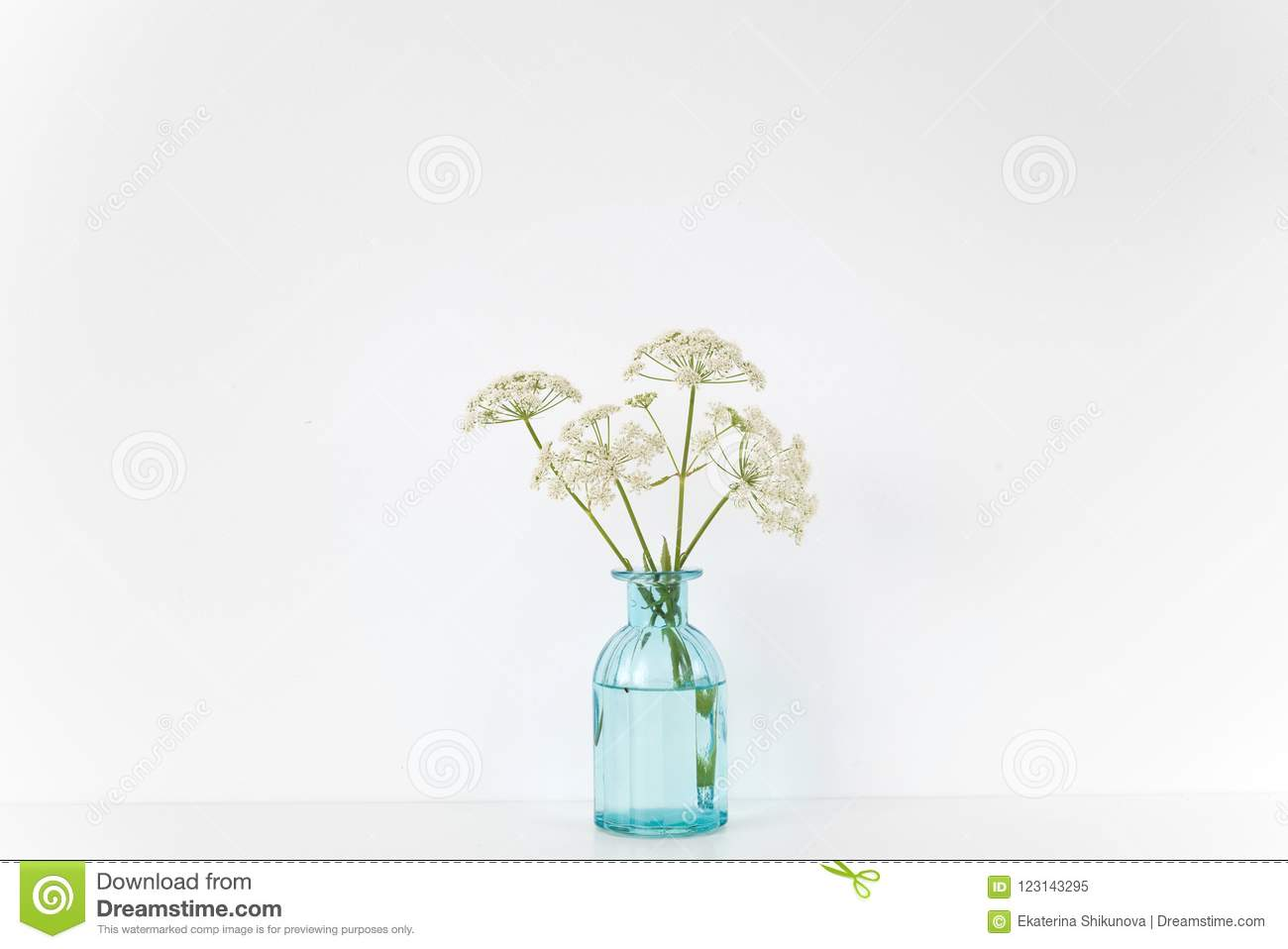 Summer Indoor Interior Transparent Blue Vase With Aegopodium