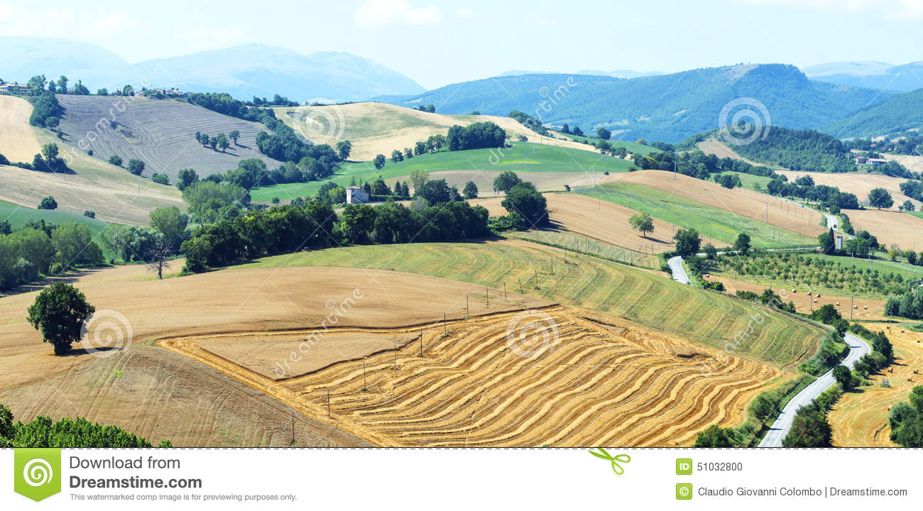 Summer landscape in marches italy stock photo image for Nearby landscapers