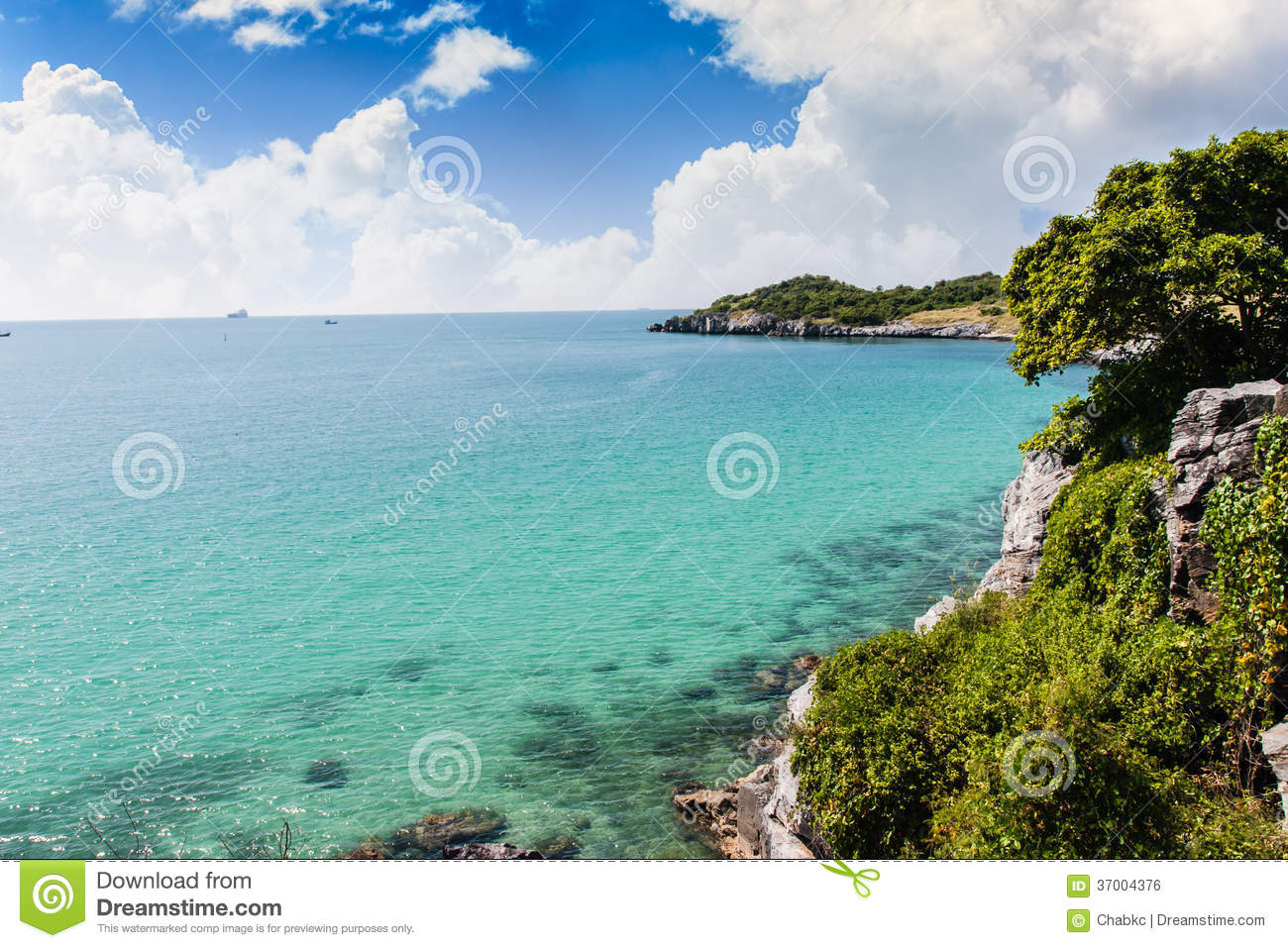 Royalty free stock image summer landscapes