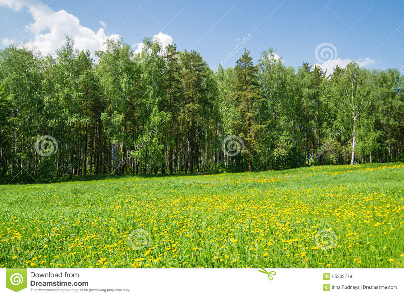 Natural areas of the Urals: a table and a description
