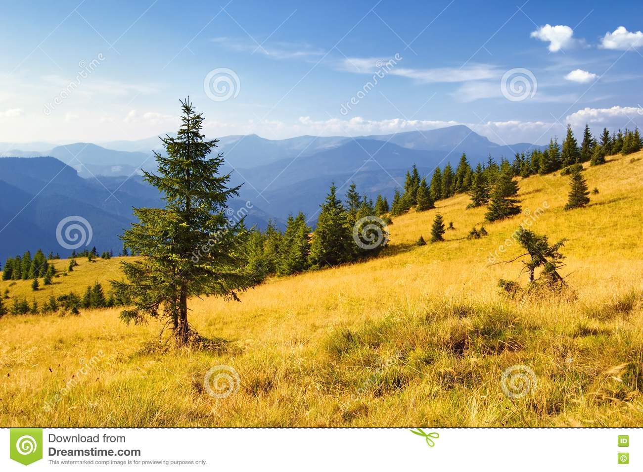 Summer Mountain Landscape Royalty Free Stock Photography - Image ...: becuo.com/summer-mountain-landscape