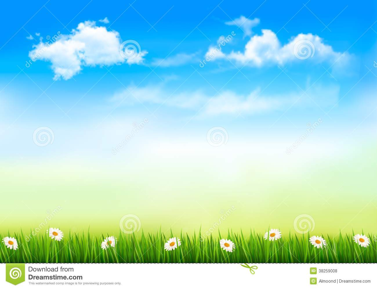 summer nature background with green grass and sky royalty free stock photos image 38259008 sun rays vector free sun rays vector images