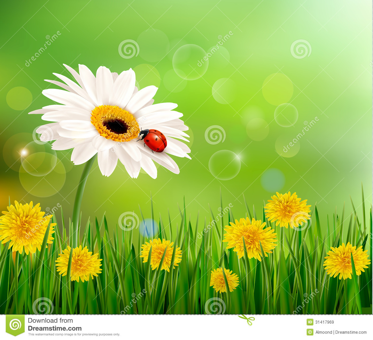 Spring Flower With Green Background Vector 02 Free Download: Summer Nature Background With Ladybug On White Flo Stock