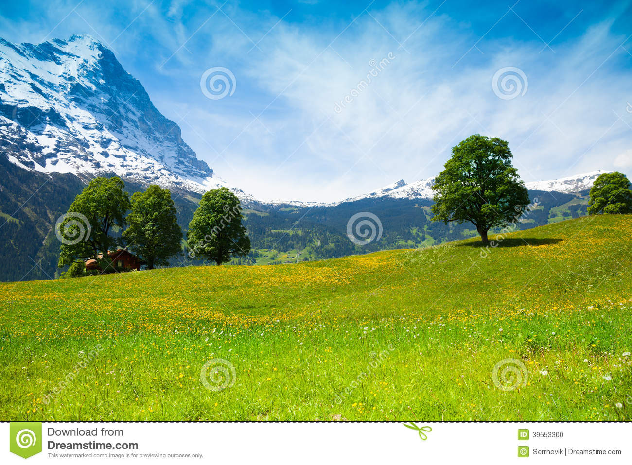 Summer nature landscape near alps stock photo image for Nearby landscapers