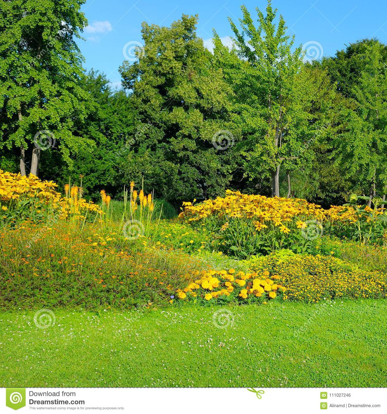 Summer Park With Beautiful Flower Beds Stock Photo Image Of