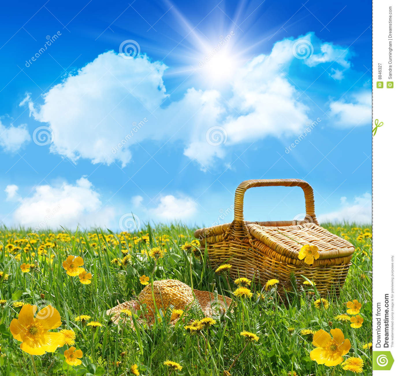 Summer Picnic Basket With Straw Hat In A Field Royalty