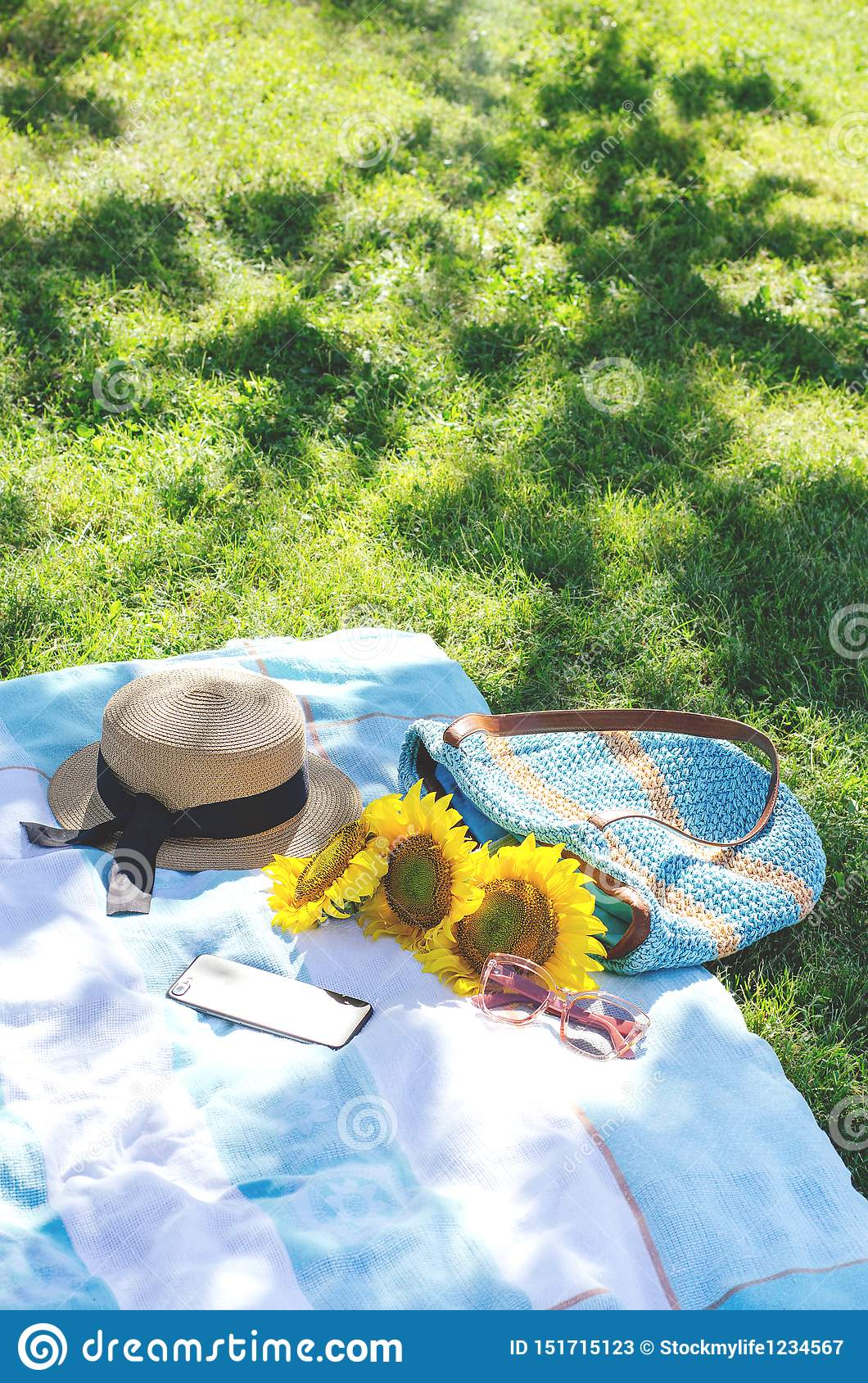 Summer picnic on the green grass with bright accessories