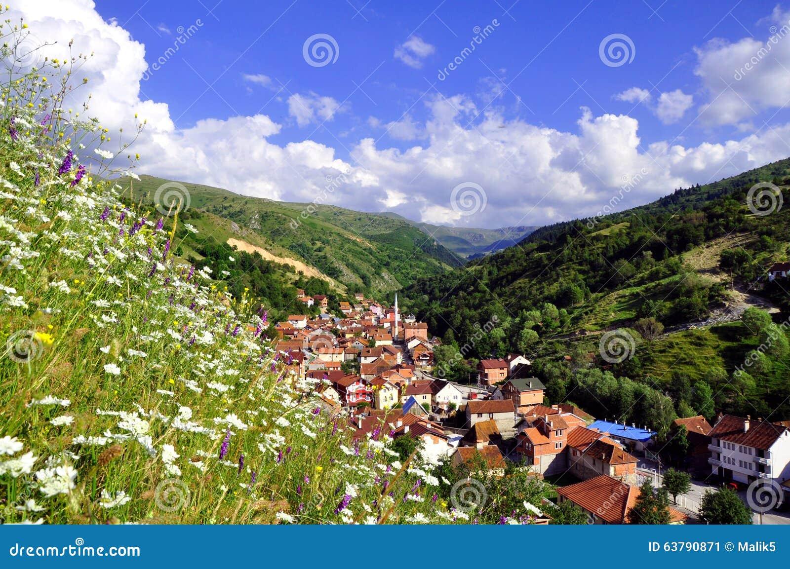 Summer rural landscape with the village