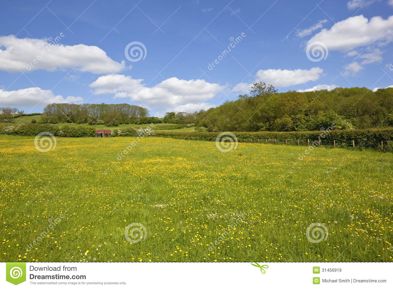 rusty animal shelter in a buttercup meadow amongst patchwork farm ...