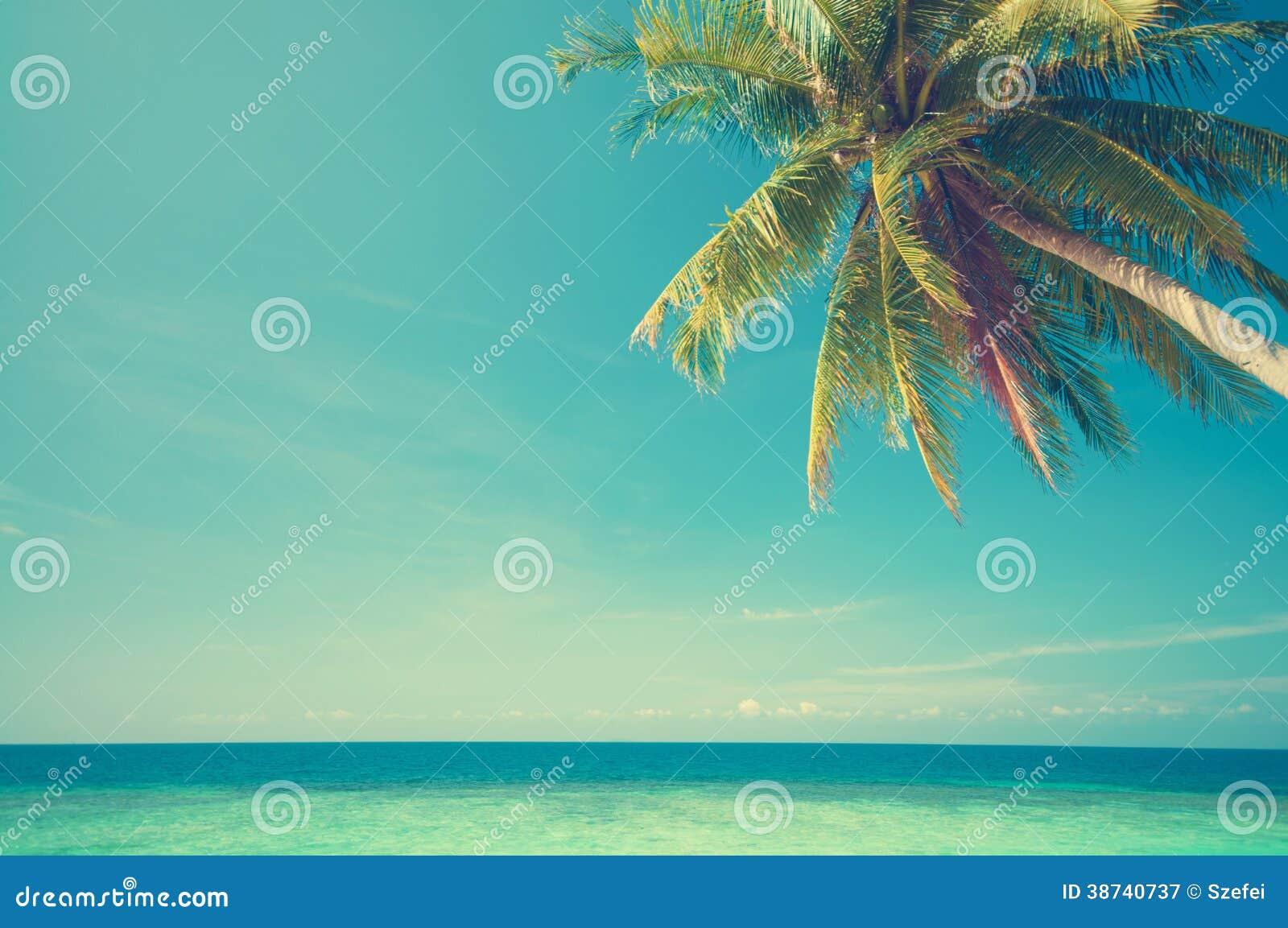 Summer sea view
