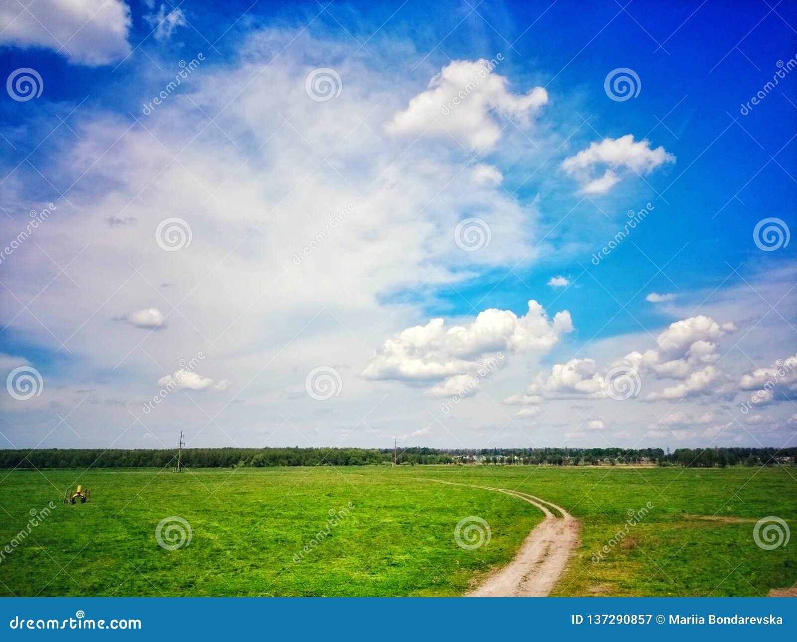 summer sky over green grass