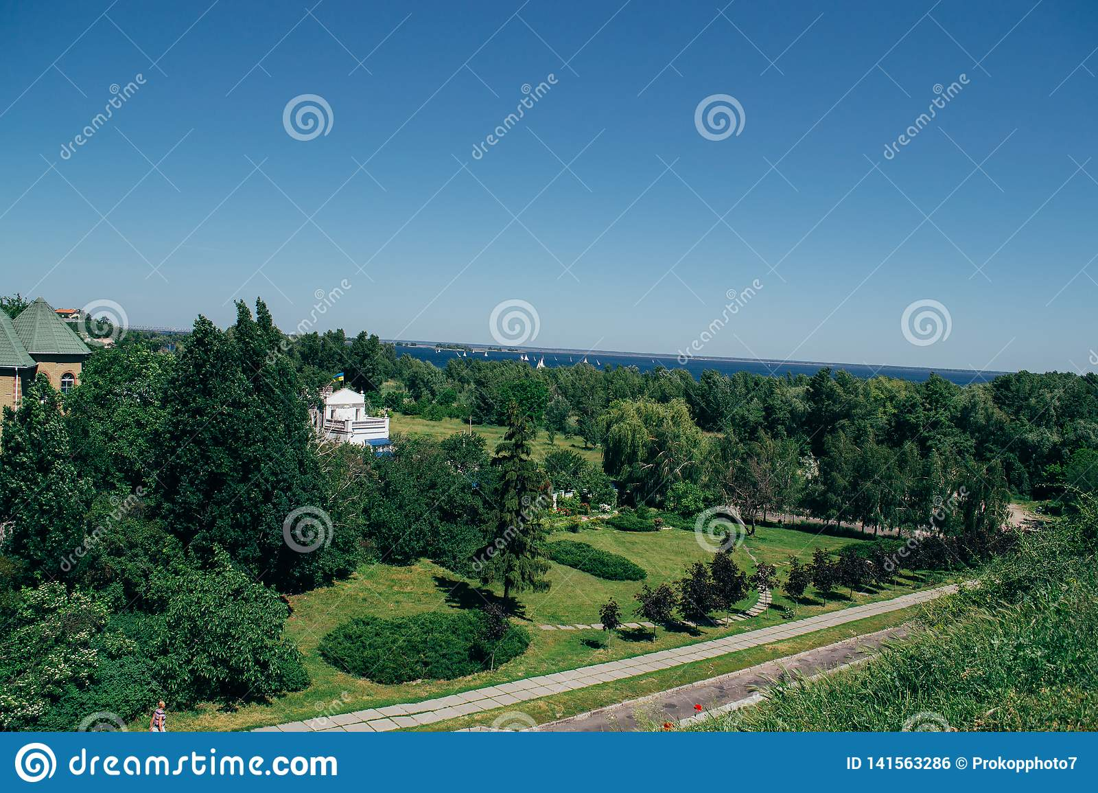 Summer sunny landscape from the air. Park and river view