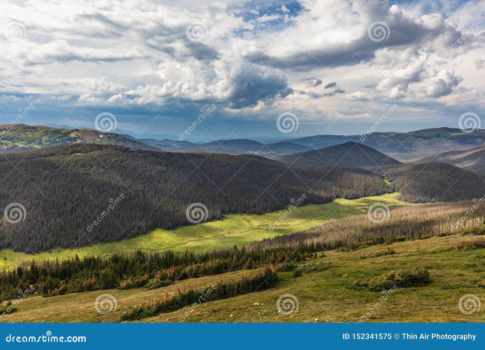 Summer on Trail Ridge, Trail Ridge Road, Rocky Mountain National Park, Colorado, USA