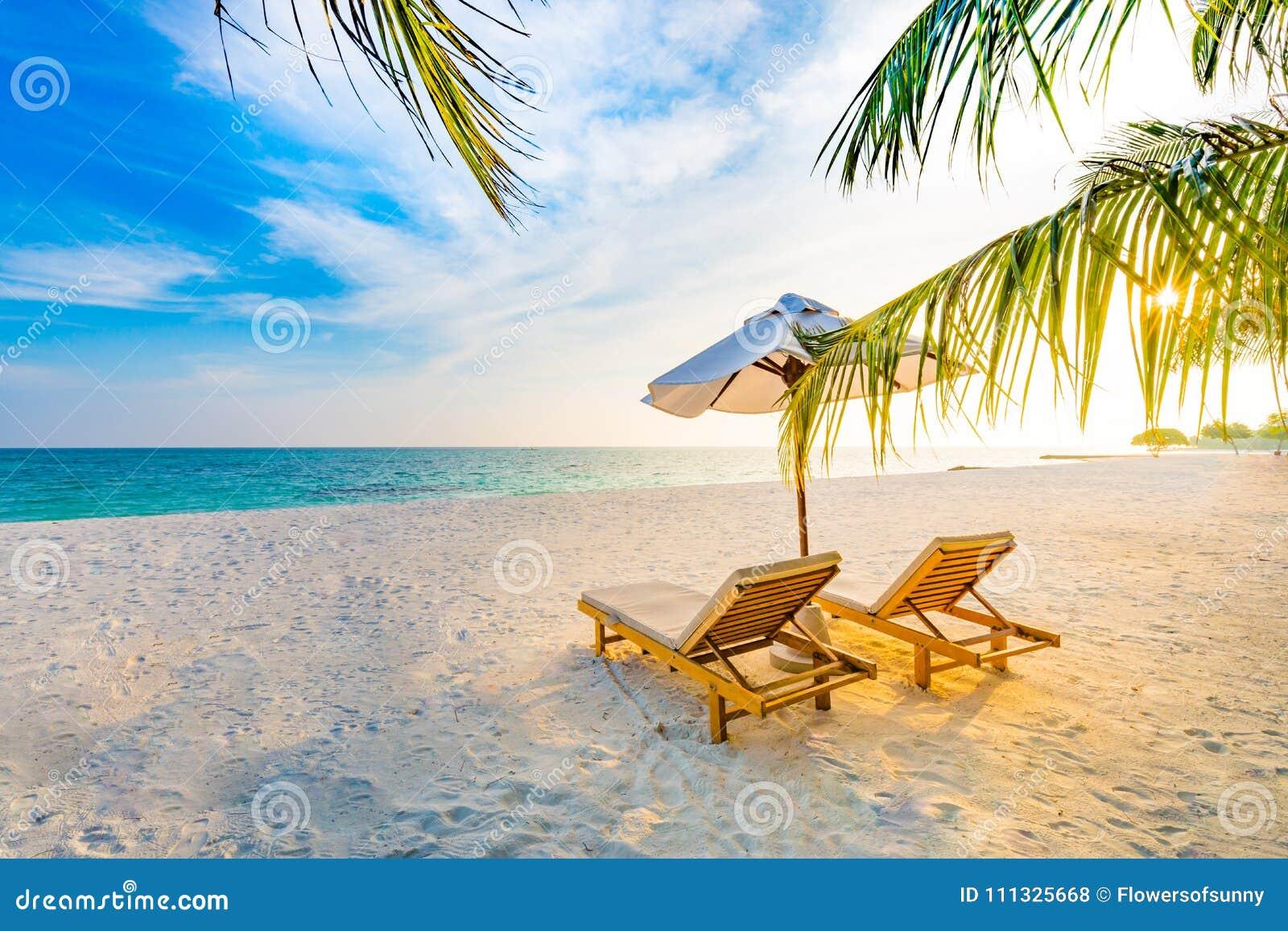 Summer Travel Destination Background Summer Beach Scene Sun Beds