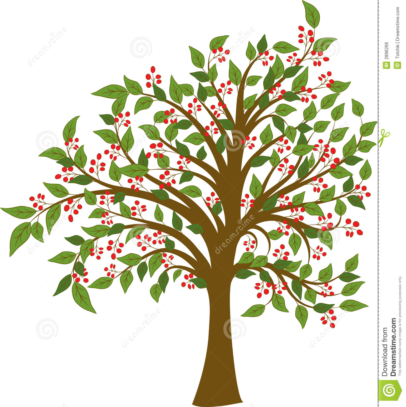 Summer tree, vector stock vector. Illustration of cherry ...