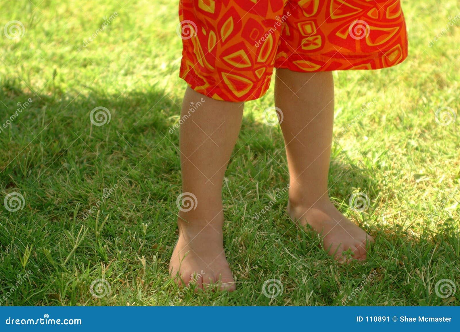 Summer Trunks