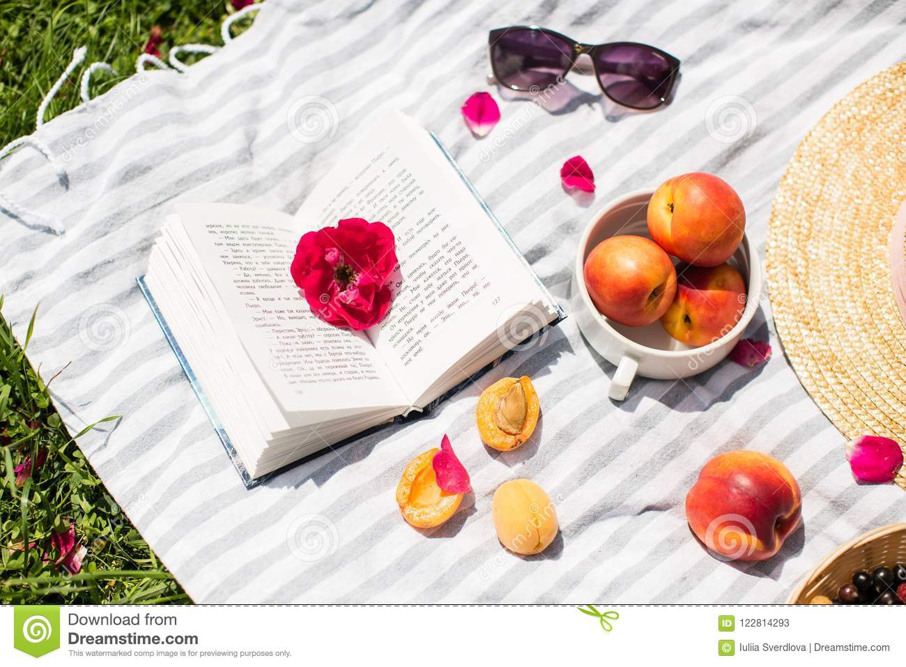 Summer vacation in garden with book and fruit