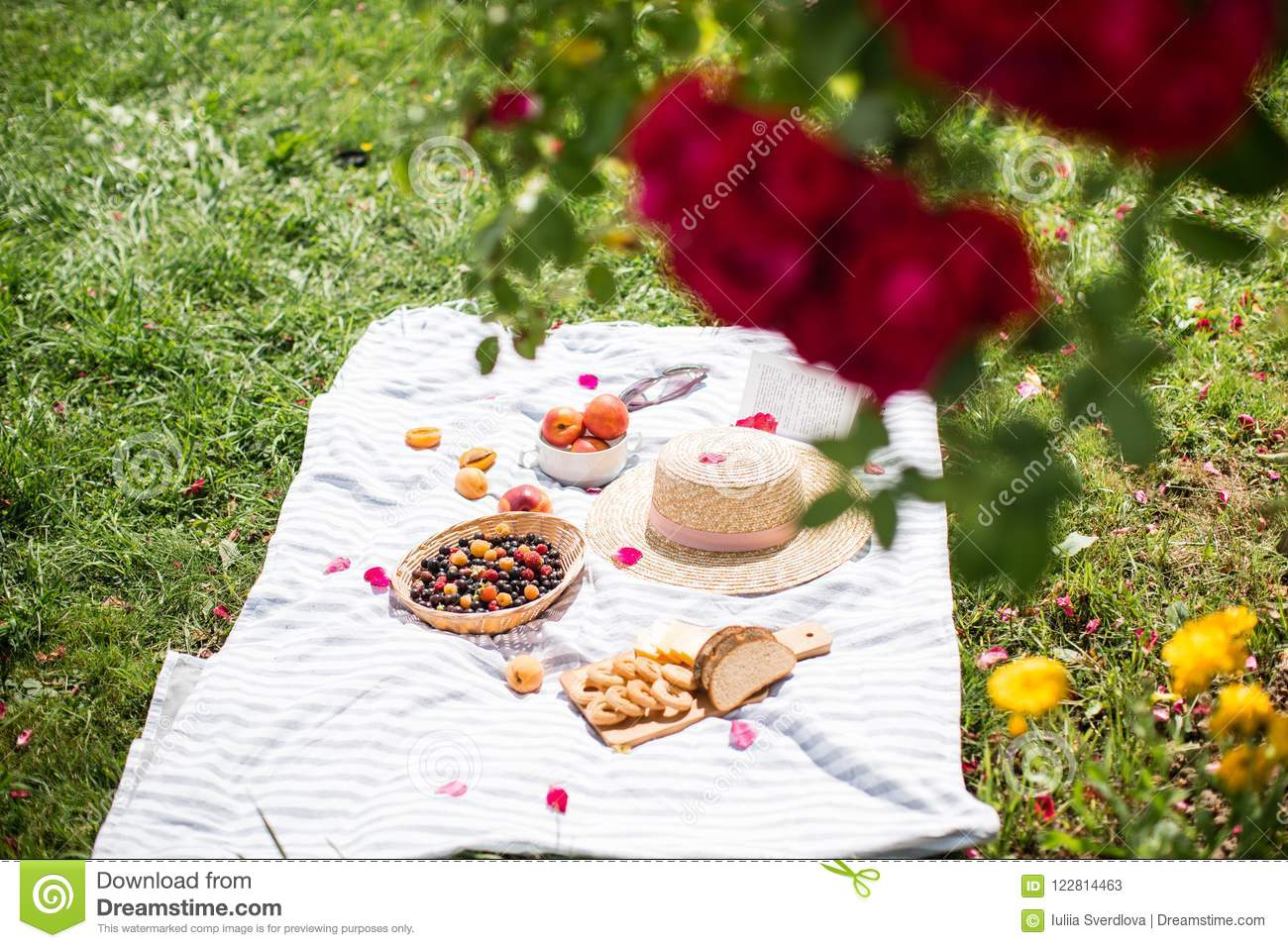 Summer vacation in the garden under the red roses