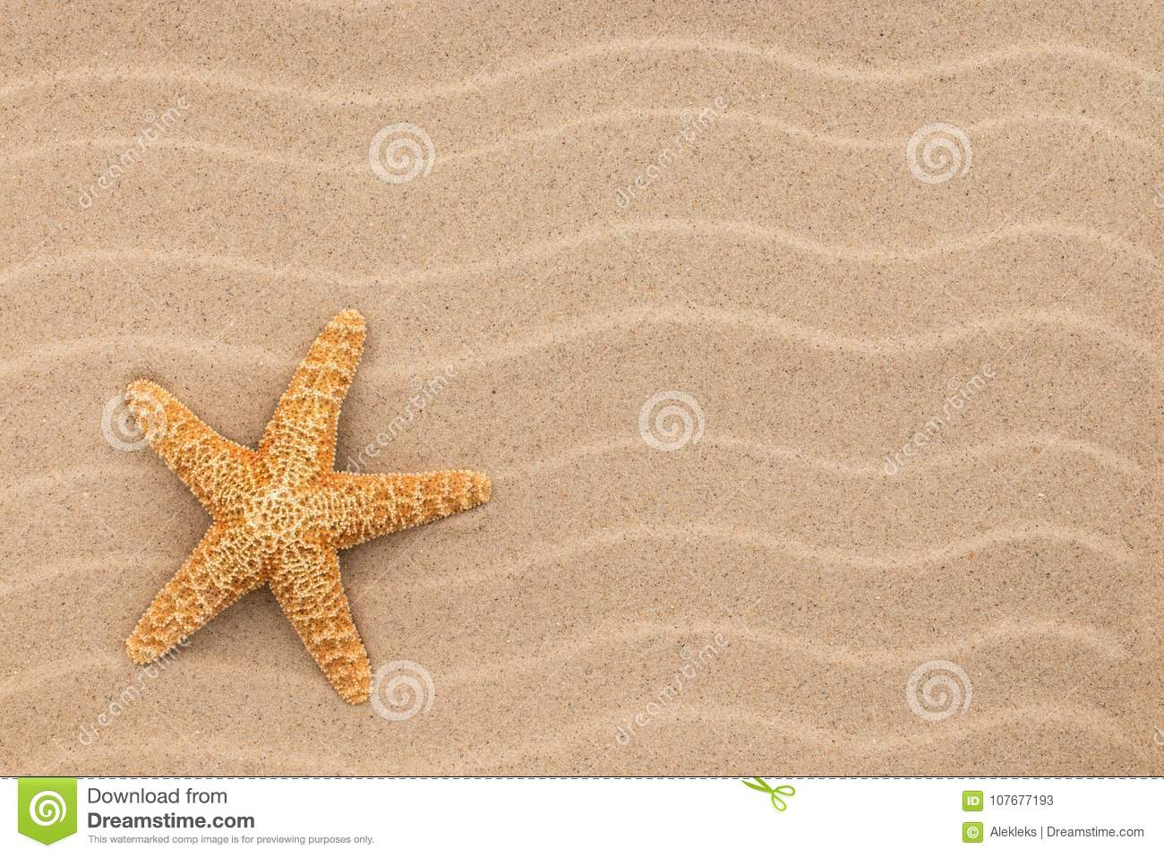 Summer Wallpaper Starfish On Sand Beach Background