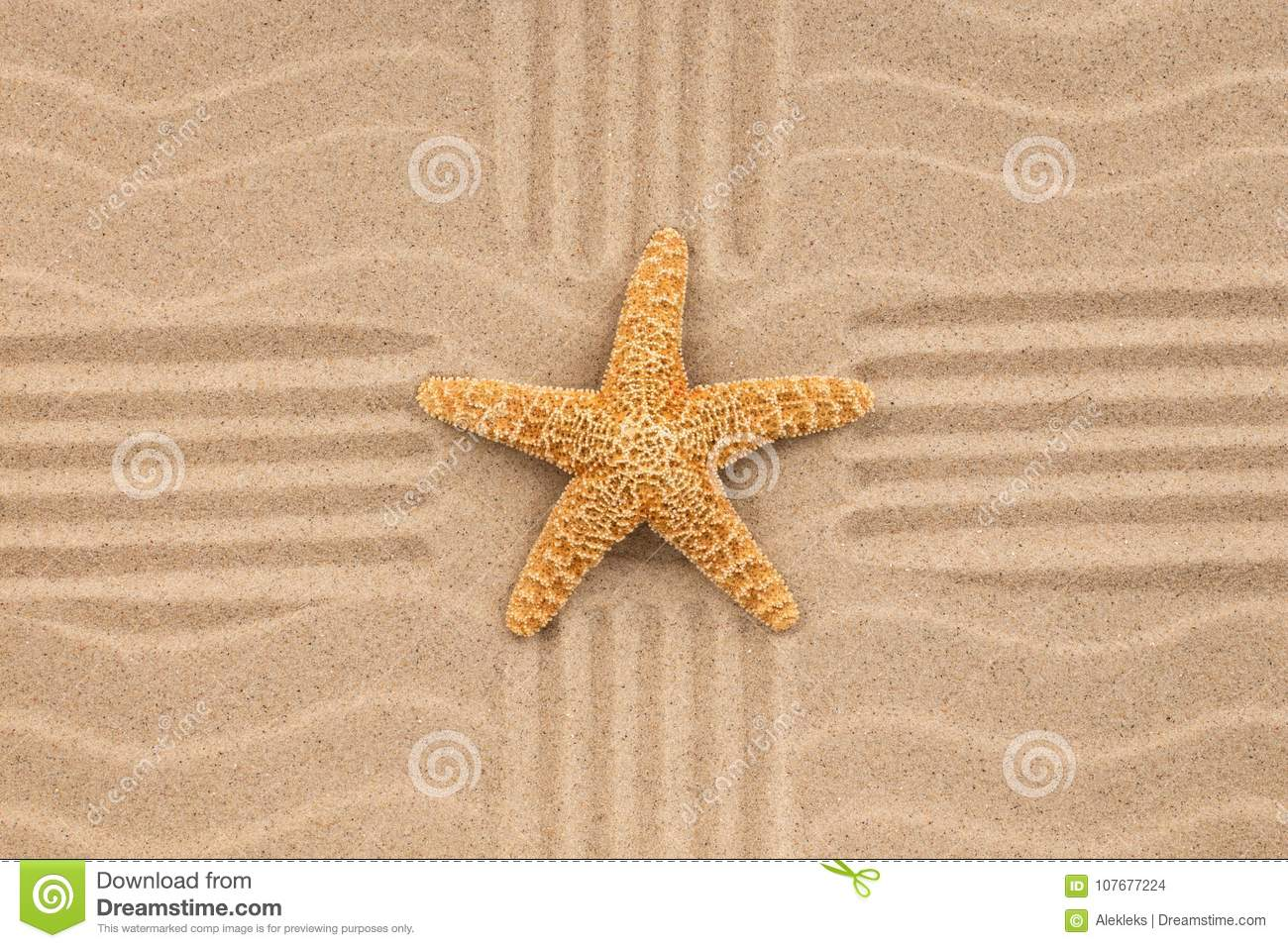 Summer Wallpaper Starfish On Sand Beach Background View From Above