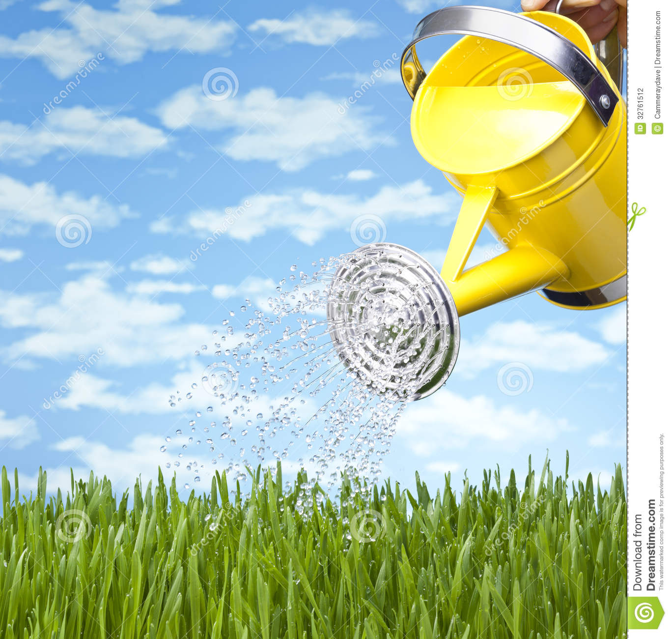 Summer Watering Can Grass Stock Photography Image 32761512