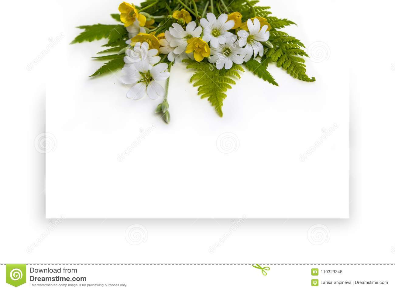 Bouquet Of Flowers On A White Background With Copy Space