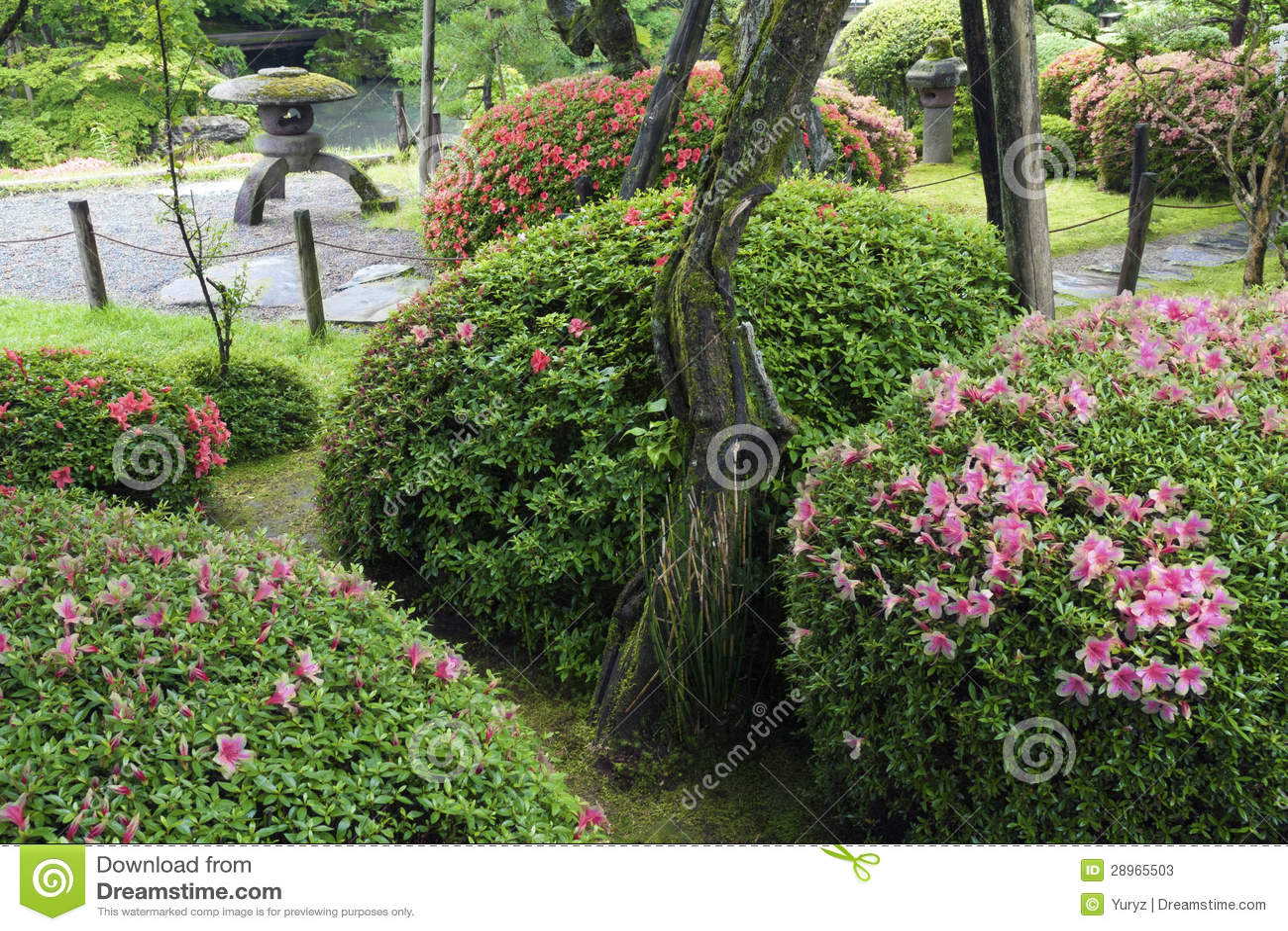 zen garden summer - photo #7