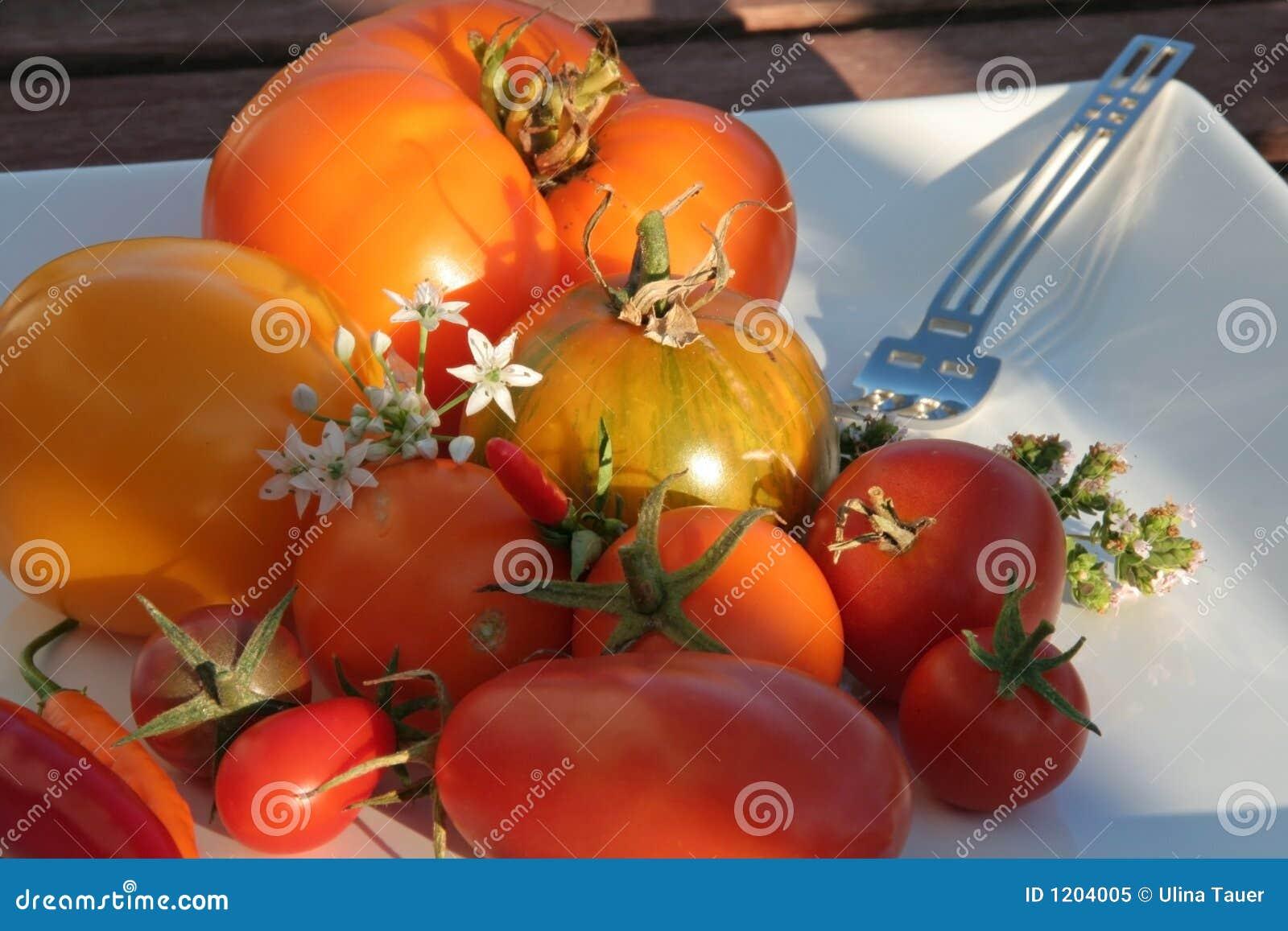 Summerly Harvest 8