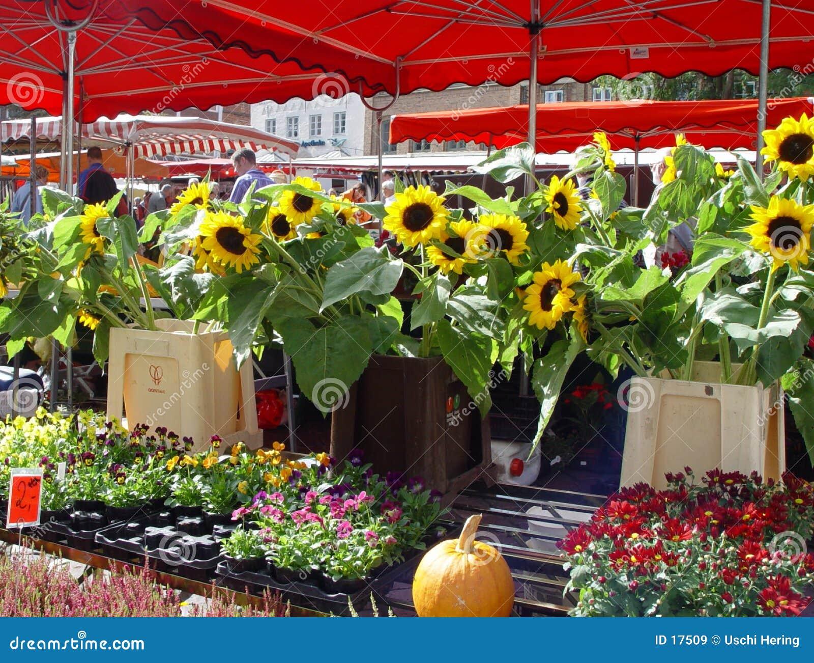 Summermarket