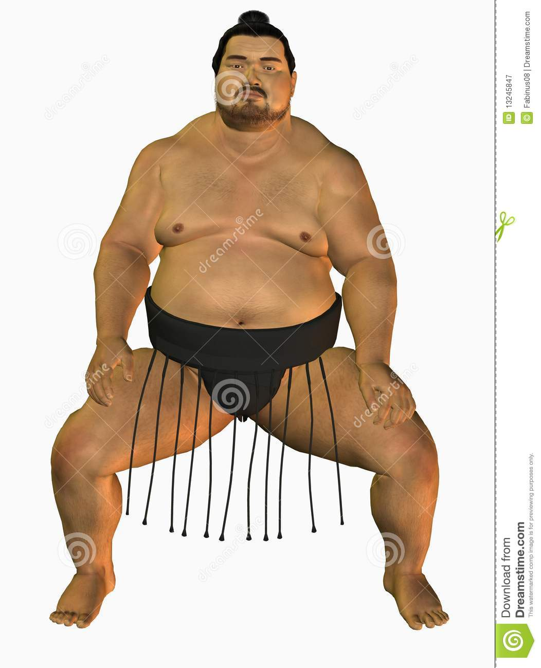 Sumo Wrestler Royalty Free Stock Photography - Image: 13245847