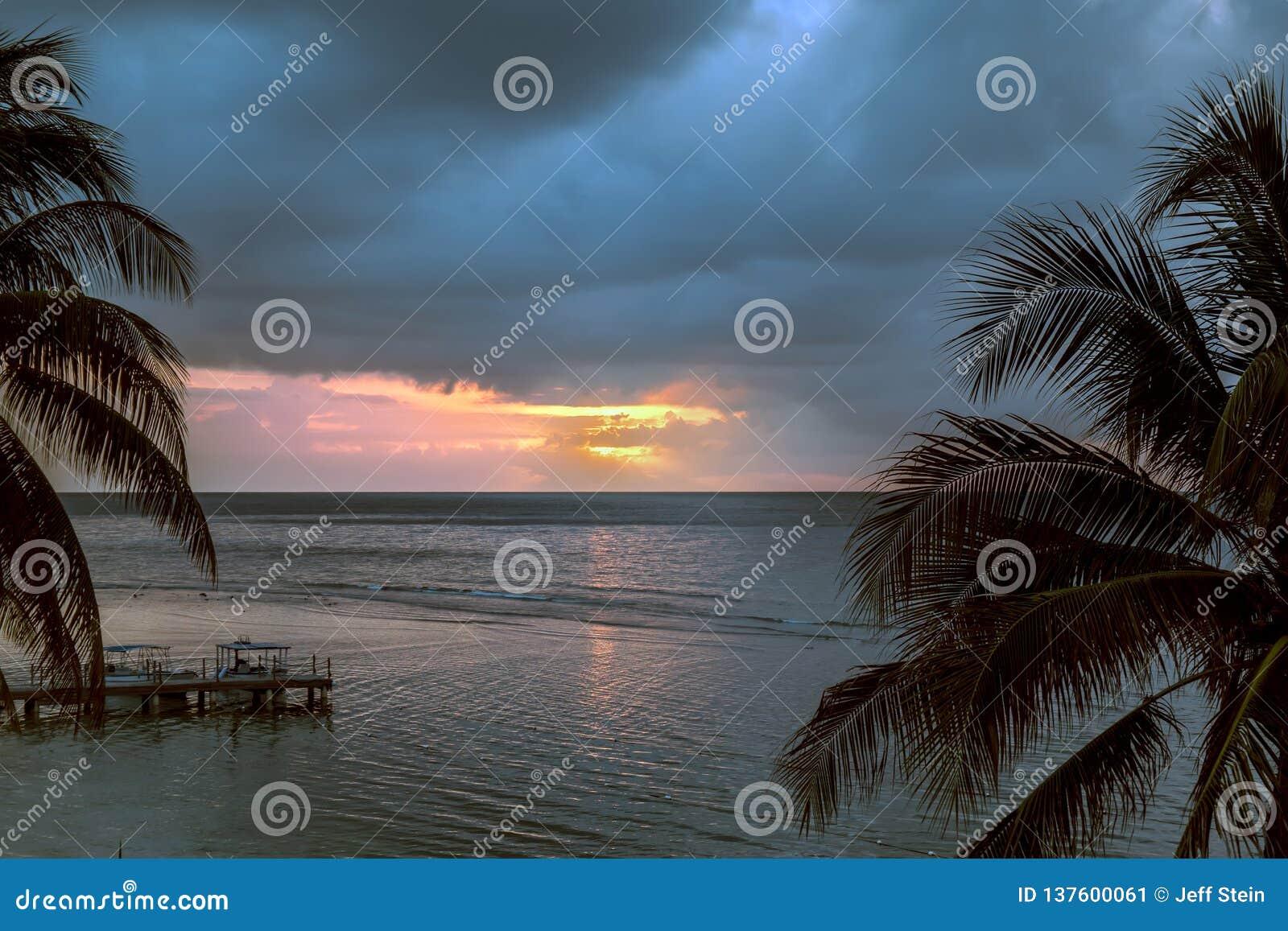 Sun che mette sull oceano con le palme