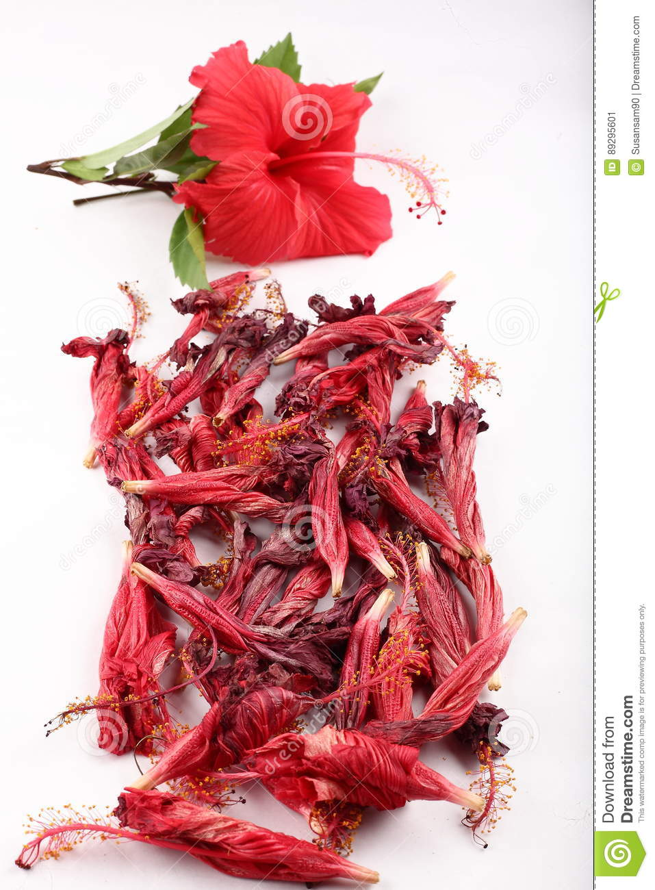 Sun dried hibiscus red flower with steam stock image image of royalty free stock photo izmirmasajfo