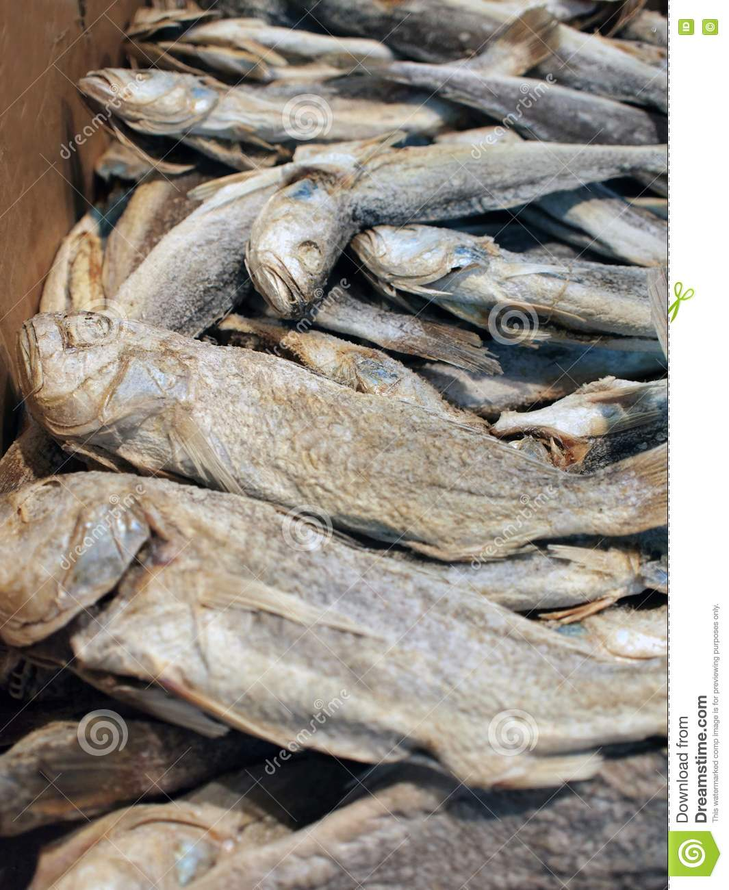 Sun dried and salted fish stock photography image 15060212 for Chinese salted fish