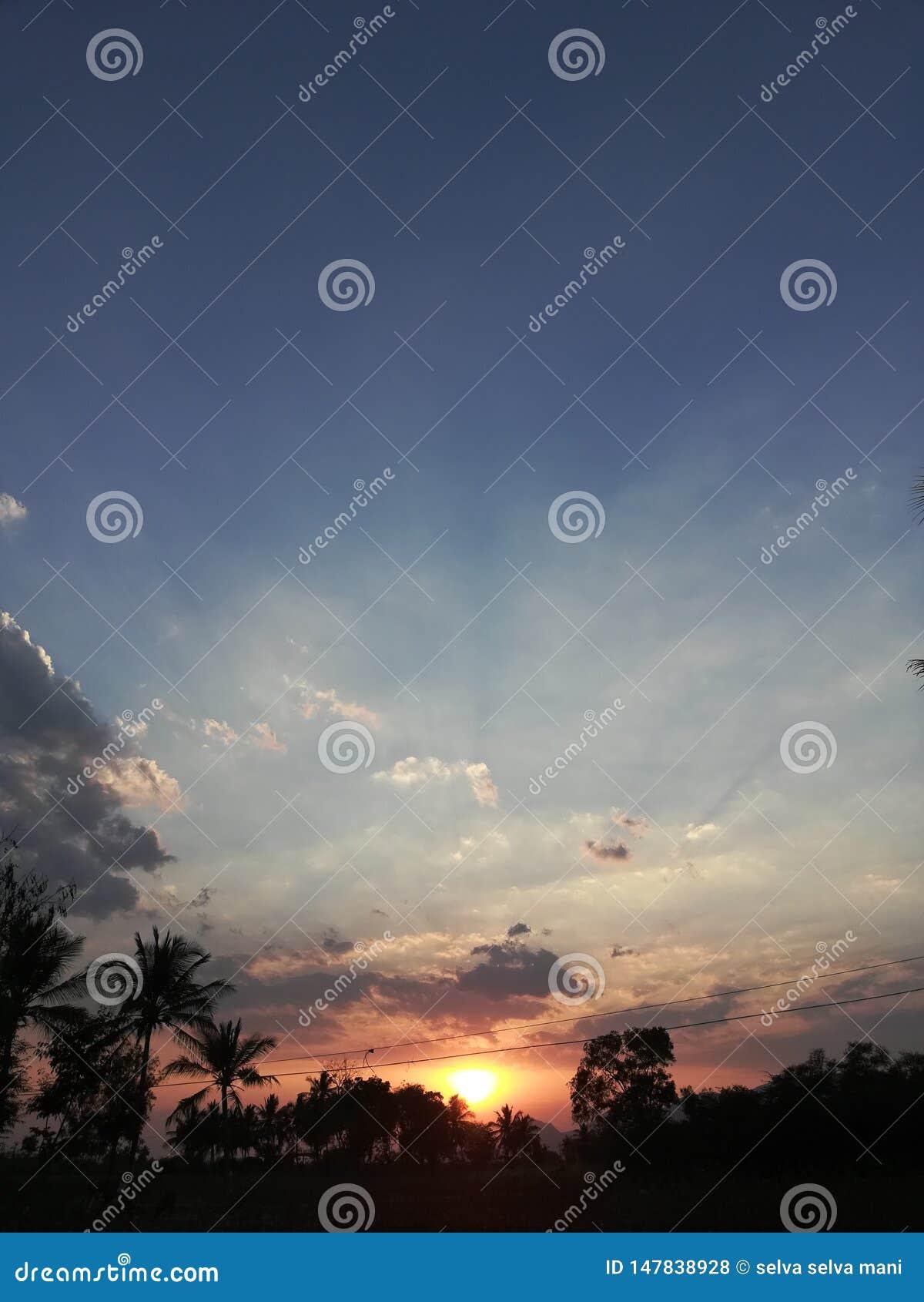Sun feliz aumenta em nossa vila